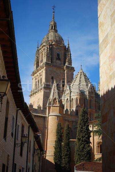 alamanca Cathedral, Spain Stock photo © luissantos84