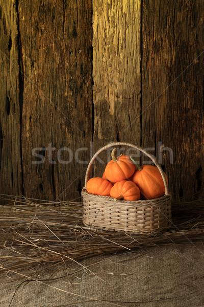 Abóbora outono abóboras folhas madeira Foto stock © lukchai