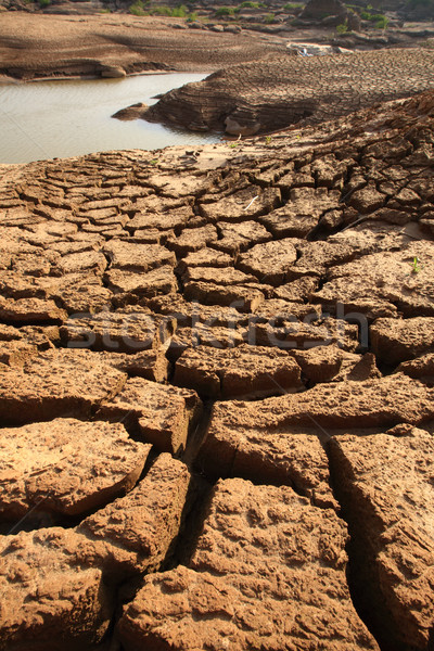 Secar solo textura terreno natureza fundo Foto stock © lukchai
