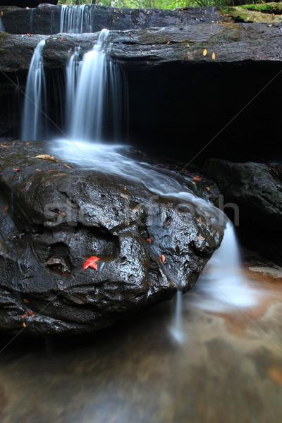 Wodospad parku zdumiewający Tajlandia lasu Zdjęcia stock © lukchai