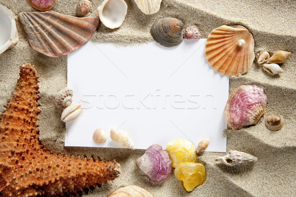 copyspace blank space summer starfish sand shells Stock photo © lunamarina