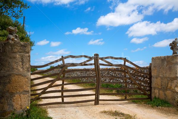 ストックフォト: 伝統的な · オリーブの木 · 木製 · フェンス · ゲート · 空