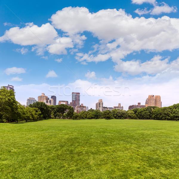 Central Park birka legelő Manhattan New York égbolt Stock fotó © lunamarina