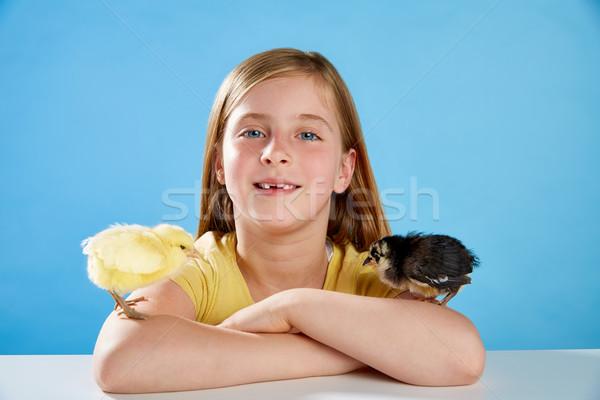 Kid girl with chicks playing on blue Stock photo © lunamarina