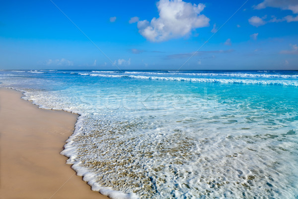 пляж Флорида берега США волны воды Сток-фото © lunamarina