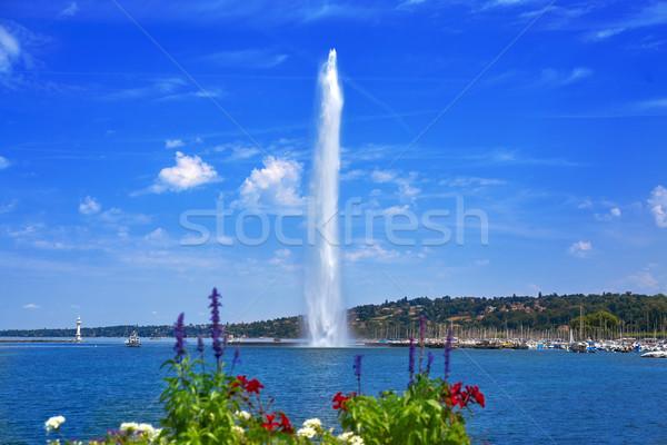 озеро воды Jet Швейцария цветы Сток-фото © lunamarina