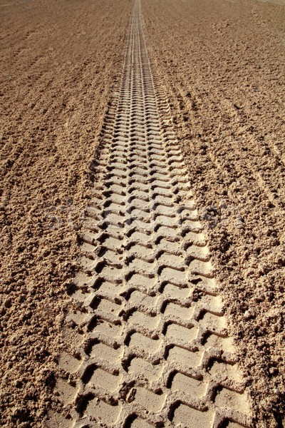 beach sand tyres footprint perspective to infinite Stock photo © lunamarina