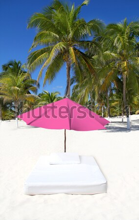 Parasol plage tropicales parapluie matelas palmiers Photo stock © lunamarina