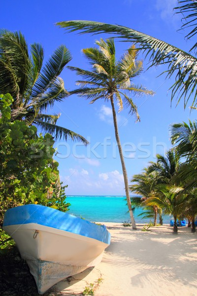 Caribbean tropical beach with boat beached Stock photo © lunamarina