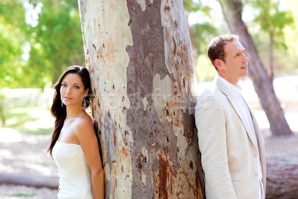 Couple happy in love at park outdoor tree Stock photo © lunamarina