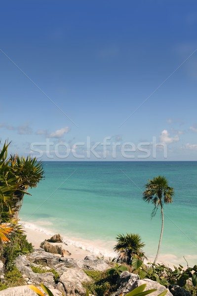 Caribbean turquaise sea view in Tulum Mexico Stock photo © lunamarina