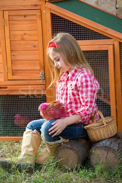 breeder hens kid girl rancher farmer with chicks in chicken coop Stock photo © lunamarina