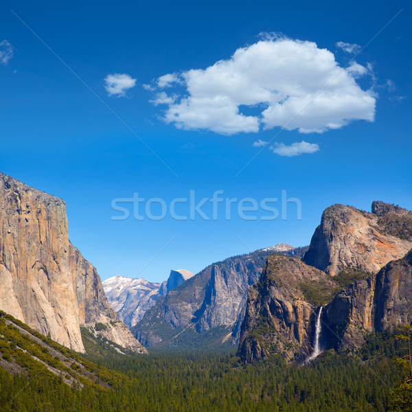 Yosemite fél kupola Kalifornia égbolt fa Stock fotó © lunamarina