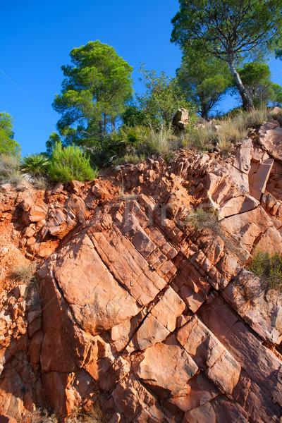 Castellon Desierto de las Palmas desert red mountains Stock photo © lunamarina