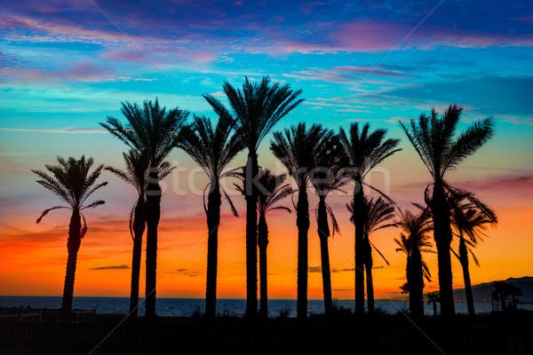 Stock fotó: Naplemente · fák · tengerpart · Spanyolország · égbolt · víz