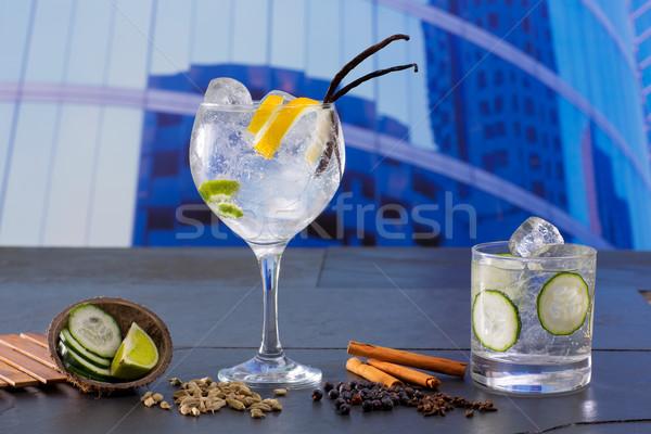 Gin cocktail specerijen stedelijke stad gebouwen Stockfoto © lunamarina