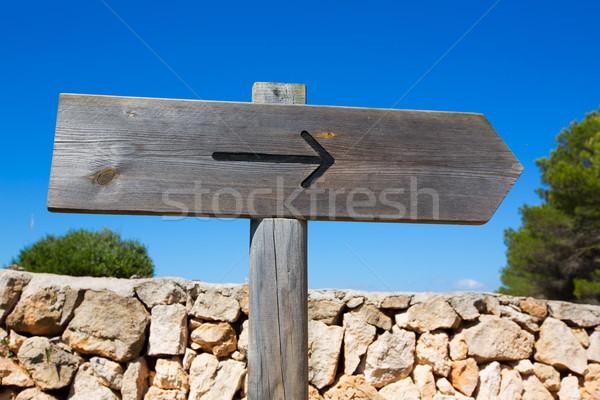 Arrow wooden track blank road sign in Mediterranean Stock photo © lunamarina