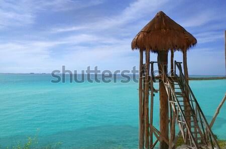 Caribbean zip line tyrolean turquoise sea Stock photo © lunamarina