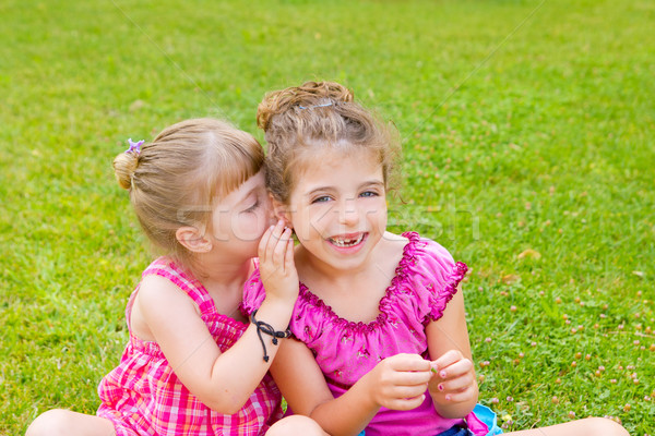 children girl sister friends whispering ear Stock photo © lunamarina