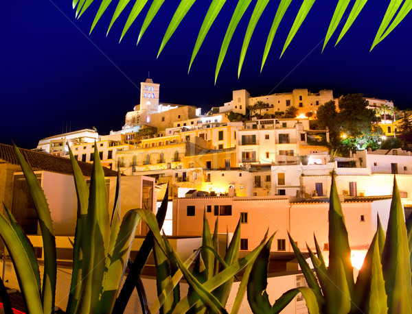 Ibiza Dalt Vila downtown in night lights Stock photo © lunamarina