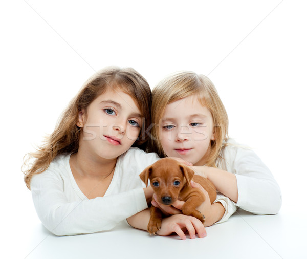sister kid girls and puppy mascot mini pinscher Stock photo © lunamarina