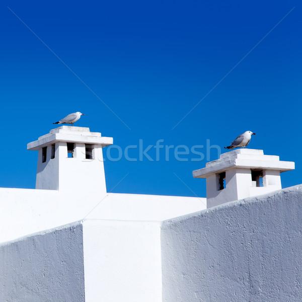 Mediterrânico branco casas gaivota casa estrada Foto stock © lunamarina