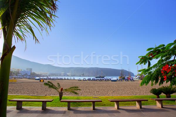 Plaj tenerife güney ağaç doğa Stok fotoğraf © lunamarina