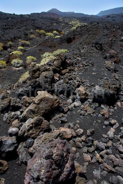 ラ 溶岩 黒 石 カナリア諸島 ストックフォト © lunamarina