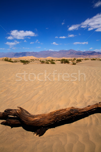 Desierto muerte valle parque California paisaje Foto stock © lunamarina