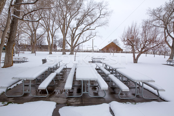 Nevada EUA primeiro neve parque Foto stock © lunamarina