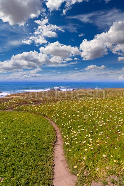Califórnia pombo ponto praia rodovia Foto stock © lunamarina
