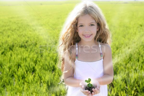 Foto stock: Planta · creciente · nina · manos · aire · libre