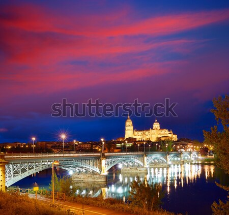 Salamanca sunset in Enrique Estevan bridge Stock photo © lunamarina