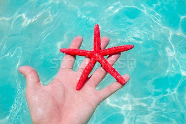 Foto stock: Vermelho · starfish · mão · humana · flutuante · turquesa · praia · tropical