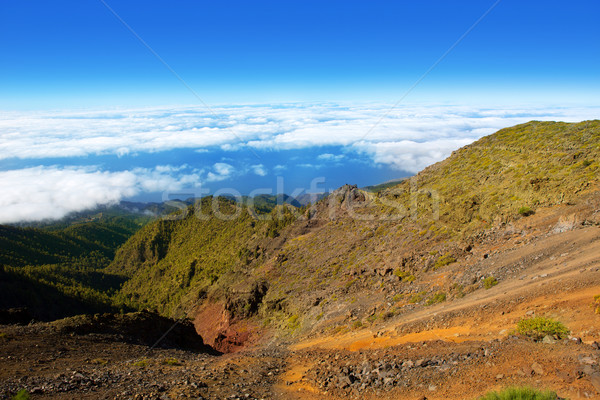 Caldera de Taburiente sea of clouds La Palma Stock photo © lunamarina