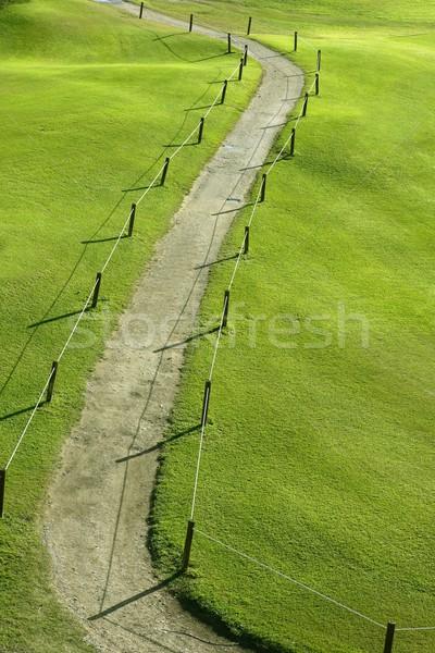 Green grass field meadow with winding road Stock photo © lunamarina