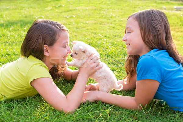 twin sister kid girls and puppy dog lying in lawn Stock photo © lunamarina