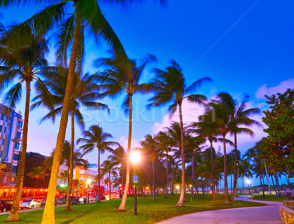 Miami güney plaj gün batımı okyanus sürmek Stok fotoğraf © lunamarina