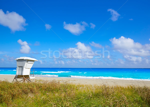 Palm spiaggia torre Florida USA acqua Foto d'archivio © lunamarina