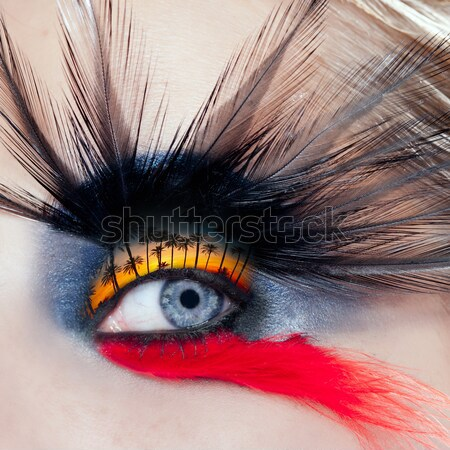 black bird woman eye makeup macro Stock photo © lunamarina