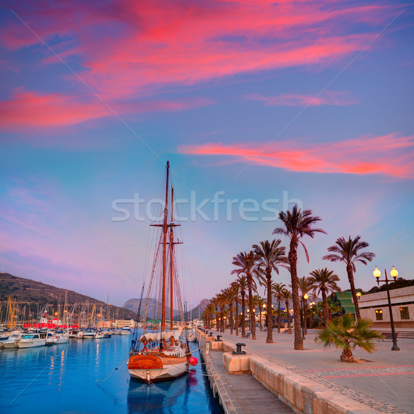 Port marina sunrise Espagne arbre Photo stock © lunamarina