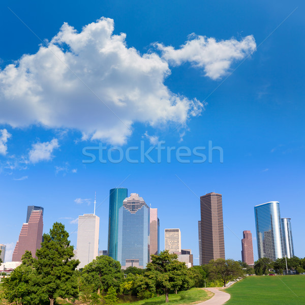 Houston Skyline parc Texas USA Photo stock © lunamarina