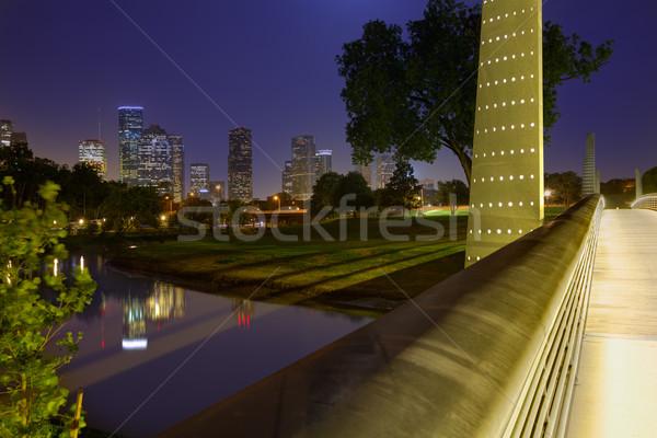 Houston naplemente sziluett Texas park égbolt Stock fotó © lunamarina