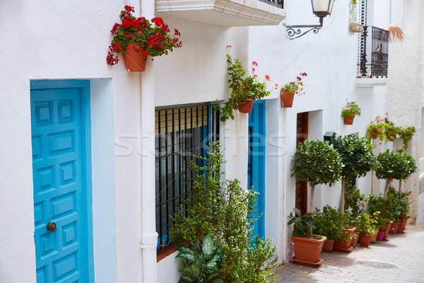 Witte middellandse zee dorp Spanje bloemen voorjaar Stockfoto © lunamarina