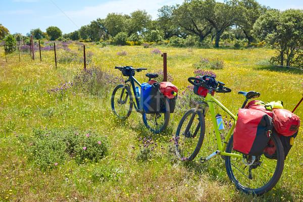 Stok fotoğraf: Yol · Santiago · bisiklet · İspanya · doğa