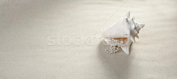 Imagine de stoc: Plaja · cu · nisip · perla · colier · coajă · vacanta · de · vara · ca