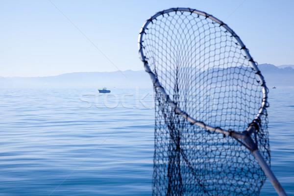 fishing landing net in blue sea Stock photo © lunamarina