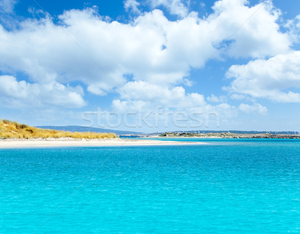 Balearic Formentera island in Espalmador Trucadors Stock photo © lunamarina