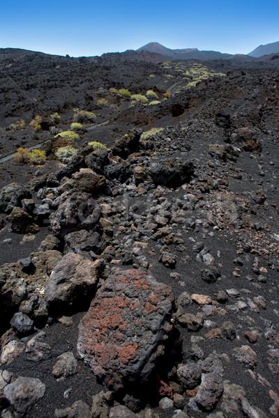 La vulcânico lava preto pedras canárias Foto stock © lunamarina