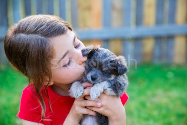 Foto stock: Crianças · menina · beijando · cachorro · cãozinho · madeira